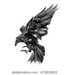 Painted Raven On White Background Stock Illustration 672819922 Rabe Tattoo, 1 Tattoo, Cover Up Tattoos, Chest Tattoo, Samoan Tattoo, Polynesian Tattoos, Kunst Tattoos, Body Art Tattoos, Sleeve Tattoos