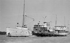 Short Waves, Sailing Ships, Cheetah, Pirates, Scandinavian, David, Boat, Coasters, Dinghy