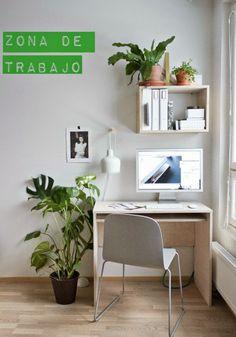 Plantas en macetas de barro. | Decorar tu casa es facilisimo.com