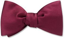 Robson - bow tie