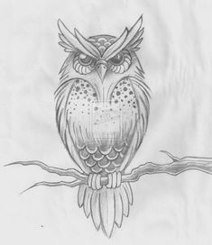 DeviantArt: More Like Owl Tattoo Design by Owl Tattoo Drawings, Tattoo Sketches, Animal Drawings, Drawing Sketches, Pencil Drawings, Art Drawings, Owl Tattoos, Drawing Owls, Branch Drawing