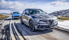 60 Stelvio Ideas Alfa Romeo Stelvio Alfa Romeo Sports Cars Luxury