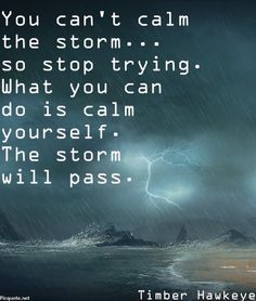 You can't calm the storm… so stop trying. What you can do is calm yourself. The storm will pass. ~Timber Hawkeye