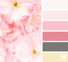 This is my favorite color palette of all of the one I've pinned. Hue Color, Colour Pallete, Colour Schemes, Color Combos, Color Palettes, Pink Color, Design Seeds, Color Concept, World Of Color
