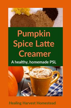 Do you love pumpkin spice lattes, but not the calories or chemicals? Find out how you can make your very own version of a PSL SUPER easily in your own home with natural spices and ingredients. This homemade PSL creamer recipe will start your day off right no matter what season of the year it is—these aren't just good for the Fall! Enjoy this hot, cozy drink! #pumpkinspicelatte #PSL #homemade #recipe #creamer #hotdrink #healingharvesthomestead Homemade Pumpkin Pie, Homemade Recipe, Homemade Vanilla, Healthy Juices, Healthy Drinks, Best Herbal Tea, Herbal Teas, Pumpkin Spice Creamer, Pie Spice Recipe