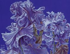 "Iris Flurry by Kristy Ann Kutch, featured in ""Colored Pencil Art That's Beautiful and Sometimes a Bit Bizarre."" Learn more at ArtistsNetwork.com. #coloredpencil #art"