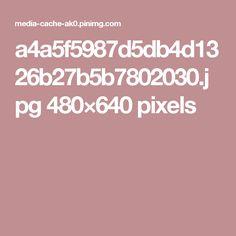 a4a5f5987d5db4d1326b27b5b7802030.jpg 480×640 pixels