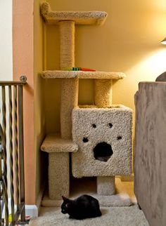 1000 ideas about pet furniture on pinterest cat trees for Do it yourself cat tower