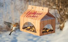 Birdhouse Cookies (Concept) on Packaging of the World - Creative Package Design Gallery Dessert Packaging, Seed Packaging, Cookie Packaging, Cosy Garden, Packging Design, Biscuits Packaging, Back To Nature, Packaging Design Inspiration, Bird Houses