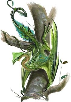 Jungle Drake by Ben Wootten