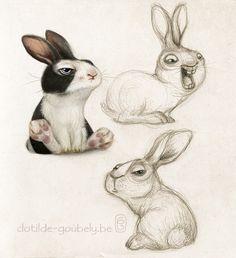Rabbit on Behance … More