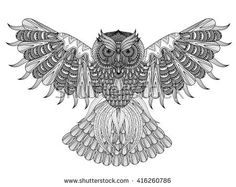 Vector hand drawn Owl coloring page in exquisite style