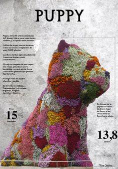 Basque Country, Bizkaia, #Bilbao, Puppy #Bizkaia #Spain #basqueCountry #visiteuskadi