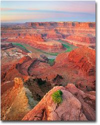 photo by Darwin Wiggett Deadhorse Point State Park, Utah; photo by Darwin Wiggett Places Around The World, Oh The Places You'll Go, Places To Travel, Places To Visit, Around The Worlds, All Nature, Amazing Nature, State Parks, Beautiful World