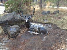 A sculpture at the High Desert Museum in Sunriver, Oregon