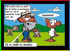 bača :) Funny Pictures, Funny Pics, Humor, Haha, Jokes, Comics, Quotation, Humour, Chistes