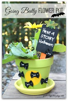 Fall Decor: Going Batty Flower Pot - You won't BELIEVE what item from your pantry can be used to make adorable bats for Halloween! #falldecor #halloweendecor #g…