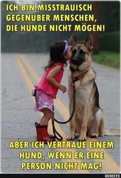 Ich bin mißtrauisch gegenüber Menschen, die Hunde nicht mögen.. | Lustige Bilder, Sprüche, Witze, echt lustig