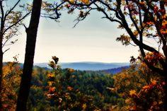Fall in Arkansas