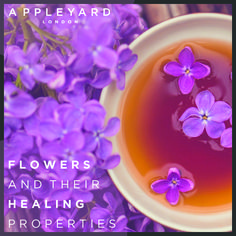 http://www.appleyardflowers.com/blog/flowers-and-their-healing-properties/ - Did you know that flowers have healing properties, some flowers can help with health issues from a bad heart to broken bones.