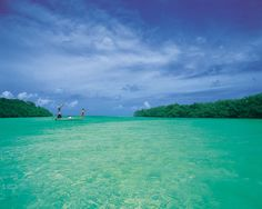 Islamorada. The color of the water really is this vibrant. It is absolutely beautiful!