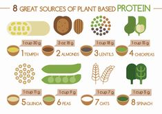 This is a great list of the best high protein foods both meat and plant based! | Feel Great in 8