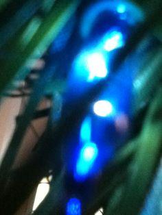 The Blue Shard