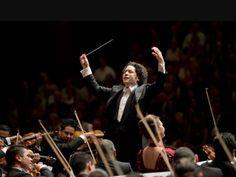 Conductors, Orchestra, Wrestling, Concert, Lucha Libre, Concerts, Band