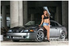 2003 Ford Mustang Cobra - Relentless Serpent: From imports to domestics, Terry Molin's '03 Cobra reigns supreme.