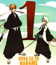 Is this picture of Toushirou and Ichigo to signify that both characters were number one with the fans?