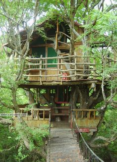 Tree house. I like the rustic ness of this one