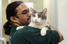 Your Cat's Time to Shine: It's Adopt a Shelter Cat Month