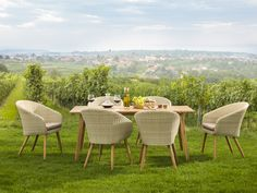 In den #Weinbergen mischt sich #Ästhetik zu #Kulinarik.