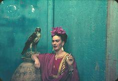 frida kahlo photo: Frida falcon