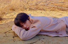 BTS Love Yourself 轉 'Tear' Concept Photo Y Version (SG)