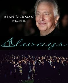 Rest in peace Alan Rickman, you will always be in our hearts Harry Potter Books, Harry Potter Universal, Harry Potter Memes, Slytherin, Hogwarts, Snape And Lily, Alan Rickman Severus Snape, Severus Rogue, Literatura