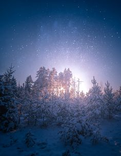 Night in Finland
