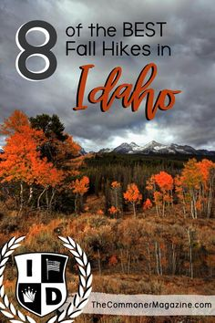 Fall hiking in Idaho is awesome, and is one of the best times of year to head out to the hiking trails due to beautiful weather and the amazing wildlife busying themselves before winter sets in. Join local travel blogger, Kim Lewis, as she shares 8 of Idaho's best hiking spots for the cooler weather. | Visit Idaho | Best hikes in Idaho | Hiking Idaho | Things to do in Idaho |