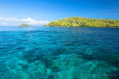 Komodo National Park is located between the islands of Sumbawa and Flores in Indonesia and consists of Komodo, Rinca, Padar and other smaller islands. Komodo National Park, National Parks, Sailing Adventures, Small Island, Water, Outdoor, Flowers, Gripe Water, Outdoors