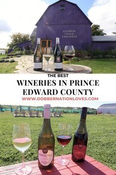 Researching the best wineries in Prince Edward County? Plan an Ontario road trip to sip your way through these award winning wineries near Belleville. Canadian Travel, Canadian Rockies, Prince Edward County Ontario, Ontario Travel, Canada Holiday, Photography Tours, Thailand Travel, Trip Planning, Nova Scotia