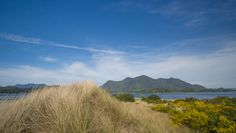 Sand dunes of Stubbs Island overlooking Clayoquot Sound Relaxing Day, British Columbia, Dune, West Coast, This Is Us, Paradise, Canada, Island, Explore