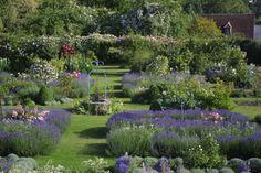 jardin de curé - Sharon Santoni