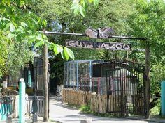 Georgetown, Guyana's Capital – Pt. 2 - a Zoon and Botanic Garden