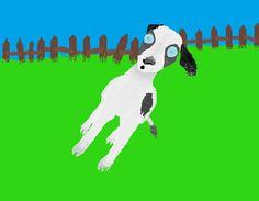 Myotonic (or fainting) goat.