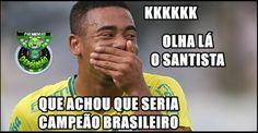 Palmeiras campeão brasileiro, veja os melhores Memes dos altos e baixos do Verdão – FUTEROCK