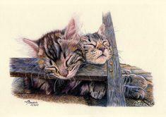 Sleepy Heads - Signed Tabby Cat Art Print by France Bauduin