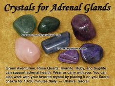 Crystals for Adrenal Glands (Adrenal Health): Green Aventurine, Rose Quartz, Kyanite, Ruby, and Sugilite can support adrenal health. Choose your favorite crystal(s) to wear or carry with you. You can also work with your favorite crystal by placing it on your Sacral chakra for 10-20 minutes a day. — Related Chakra: Sacral