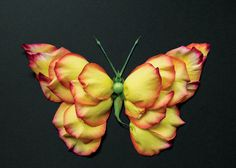 Using flowers, leaves, twigs, and seeds, Canadian artist Raku Inoue creates intricate portraits of insects. National Geographic, Glowing Flowers, Colossal Art, Portraits, Arte Floral, Canadian Artists, Leaf Art, Nature Crafts, Naturaleza
