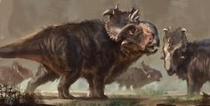 Pachyrhinosaurus, Raph Lomotan on ArtStation at https://www.artstation.com/artwork/PbL0n