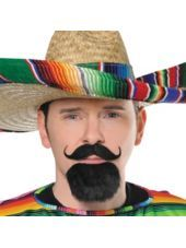 $6.00  Fiesta Facial HAIR SET -Party City  http://www.partycity.com/product/fiesta+facial+hair+set.do?sortby=ourPicks=all=178736